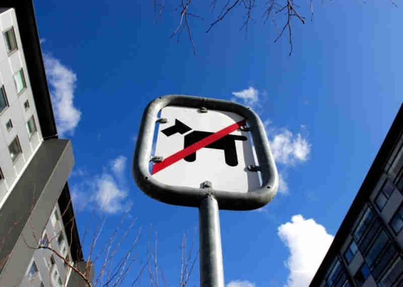 Podem proibir o trânsito e permanência de animais em condomínios?