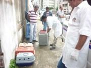 Maceió (AL): CCZ recolhe animais abandonados em casa no bairro Mangabeiras