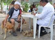Tutor de cão desaparecido reencontra animal em feira de adoção na PB