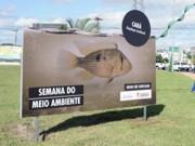 Exposição interativa mostra flora e da fauna de Sorocaba, SP