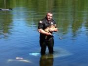 Polícia salva cão do fundo de um lago