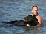 Homem arrisca a vida para salvar urso de 170 quilos