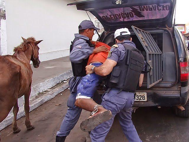 PM prende carroceiros por maus-tratos de animais em Imperatriz, MA
