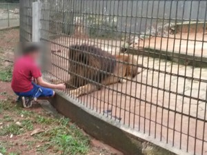 PR cascavel zoo ataqueimg 1253