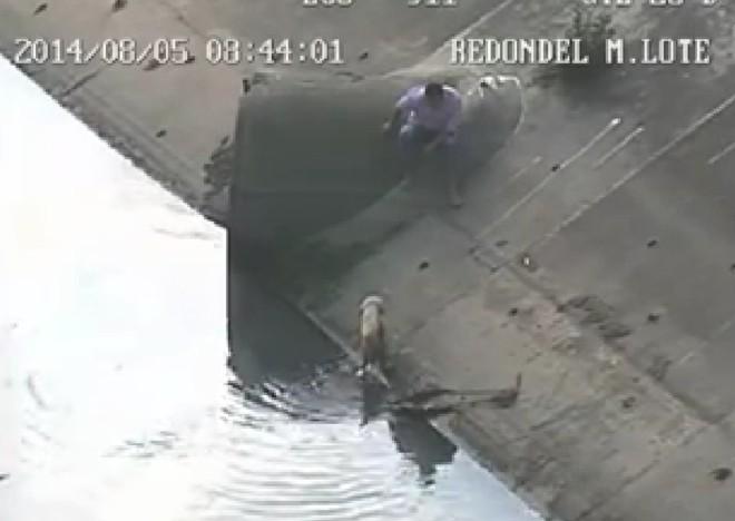 EQUADOR resgate cao3324