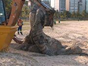 Carcaça de baleia é encontrada em praia de Vitória, ES