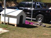 Moradores se revoltam com retirada de casinhas de cães abandonados