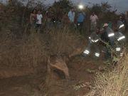 Cavalo coberto de lama é resgatado de buraco em Montes Claros, MG