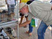 Zoonoses recolhe 40 animais das ruas de João Pessoa e coloca para adoção: 'pretos são rejeitados'