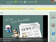 Prefeitura de Blumenau (SC) apresenta site para denúncias sobre animais de rua