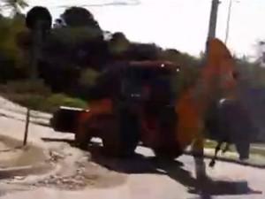 Internauta flagra cavalo sendo transportado por retroescavadeira