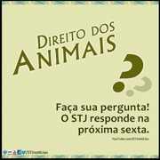 STJ responderá dúvidas sobre Direito dos Animais