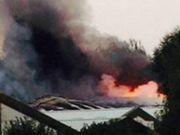 Polícia britânica prende menino de 15 anos suspeito de incendiar canil