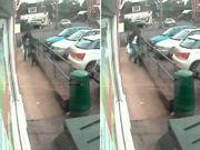 Mulher é filmada fazendo cachorro 'voar' com chute