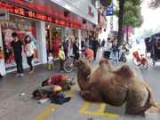 CHINA RTEmagicC camelo 01 thumb