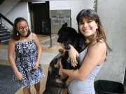 Manaus: Universitários se unem em busca de tutores para cães abandonados no campus