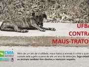 UFBA emite nota contra violência aos animais nos campi