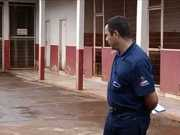 Sem captura, mais de 2 mil cães estão abandonados em Itumbiara, GO