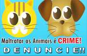 PM, Batalhão ambiental e Canil se reúnem com ONGs para definir medidas de proteção animal em João Pessoa