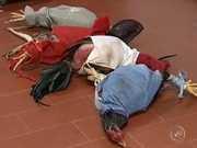 Polícia detém 18 pessoas por rinha de galos em sítio de Angatuba, SP