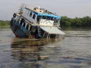 Vazamento de petróleo ameaça animais aquáticos em Bangladesh