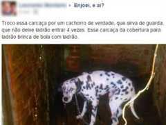 Polícia retira cachorro de tutor após anúncio na web: 'Troco essa carcaça'