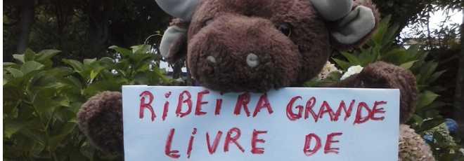 Açores: Cidadãos protestam contra a realização de touradas