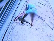 Suspeito de envenenar animais em Sorocaba (SP) se apresenta à polícia