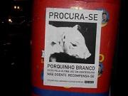 brasil ongnaomate0