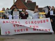 INGLATERRA circo protesto375084430 thumb