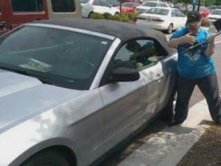 Homem é preso por arrombar carro para ajudar cão deixado sozinho em Geórgia (EUA)