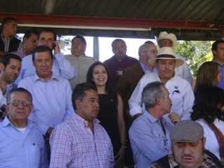 Ativistas mexicanos pedem que não votem em políticos que apoiam as touradas e são insensíveis à crueldade animal
