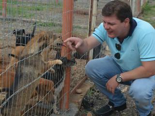 Aprovada lei municipal que estabelece multa a quem maltratar animais em Sorriso, MT