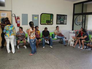 Tempo de espera por atendimento no Hospital Veterinário pode chegar a 5 horas em Teresina, PI