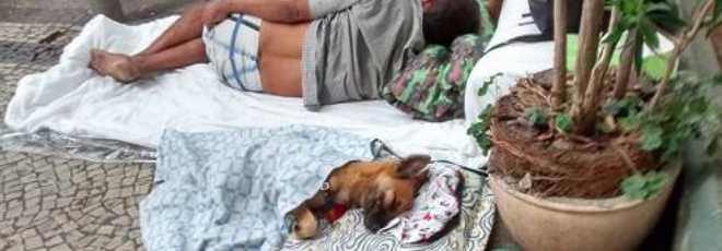 Foto de morador de rua com cão em caminha circula na internet