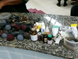 Oito pessoas são detidas suspeitas de promover rinha de galo em RR