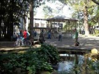 Projeto Cão-panhia incentiva adoção consciente em Rio Claro (SP)