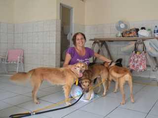 'Só deu tempo de salvar os animais', diz desalojada pela chuva em Aracaju, SE