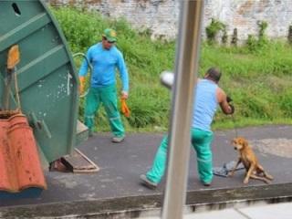 Homem que jogou cachorro vivo dentro de triturador ficará solto