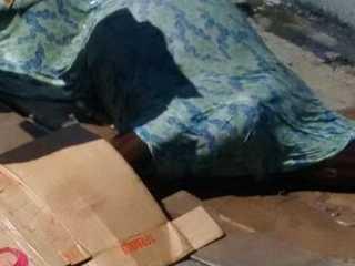 Égua morre após ser espancada na Zona Sul do Recife