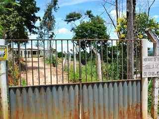 Comissão de proteção dos animais da ALMG quer conhecer situação de canil em Manhuaçu, MG