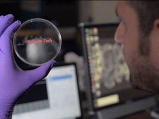 Nova tecnologia promete acabar com testes em animais