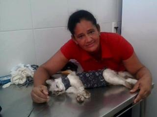 Protetora de animais diz que é ameaçada por vizinho em Paulista, PE
