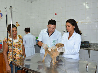 Acre: Centro de Zoonoses de Rio Branco garante vacinação, consultas e cirurgias gratuitas