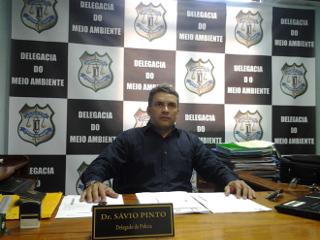 Vídeo mostra tutor incentivando ataque de pitbulls em Macapá, AP