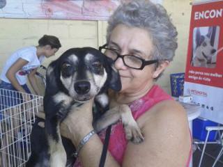 Cadela é adotada após ficar quase seis anos no CCZ da Serra, ES