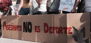 Espanha: Campeonato de tiro em Alhaurín de la Torre tem protesto contra 'matança de aves'