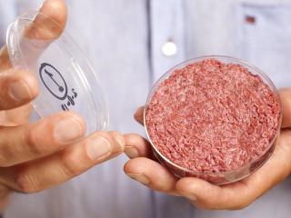 Hambúrguer de carne artificial deve chegar em breve ao mercado