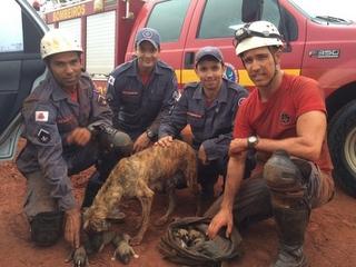 Bombeiros resgatam cadela e oito filhotes dentro de tubulação, em Frutal, SP