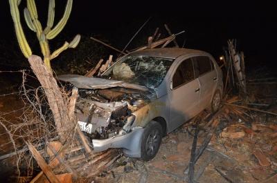Carro colide com animais e deixa dois jumentos mortos na estrada da Prata, na PB